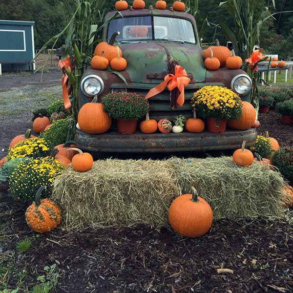Cavage's-Country-Farm-Market-pumpkins-and-vintage-green-truck-and-hay-bales