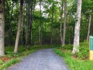 Cornelia-&-Florence-Bridge-Nature-Preserve-cornelia-trail