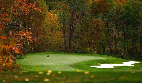 Country-Club-of-the-Poconos-green-surrounded-by-forest
