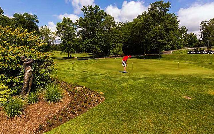 Great-Bear-Golf-Country-Club-golf-golfer