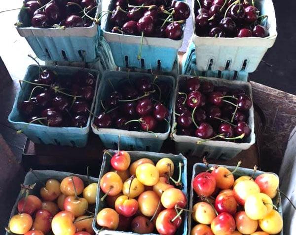Green-Valley-Farm-Market-&-Creamery bing and queen anne cherries