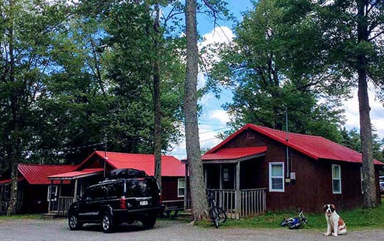 High-Country-Cottages-Motel-and-trees