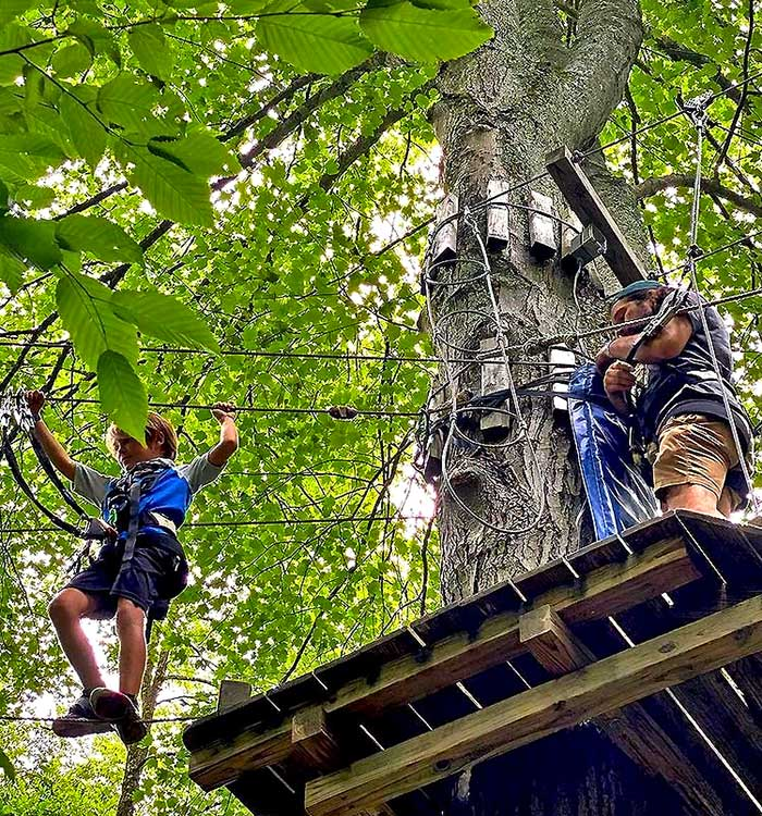kid on treetops course
