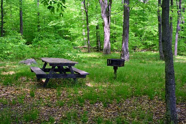 beach-at-gouldsboro-state-park-picnic-table