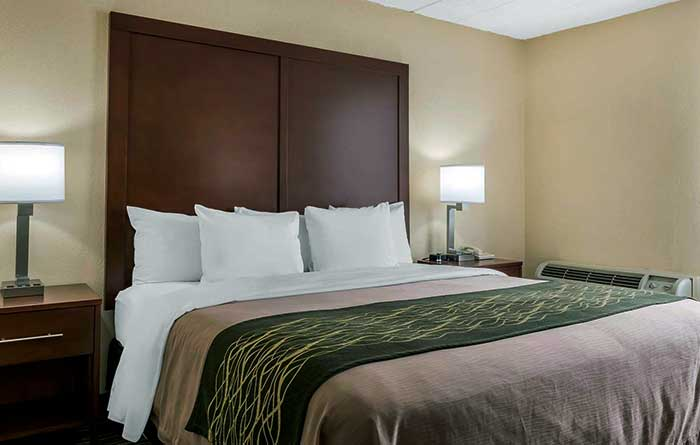 comfort-inn-white-haven-guest-room-bed