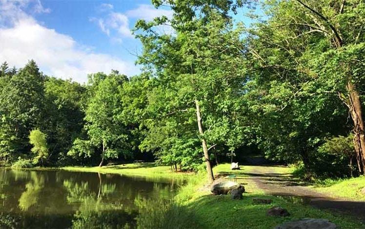 cranberry-run-campground-pond-lake