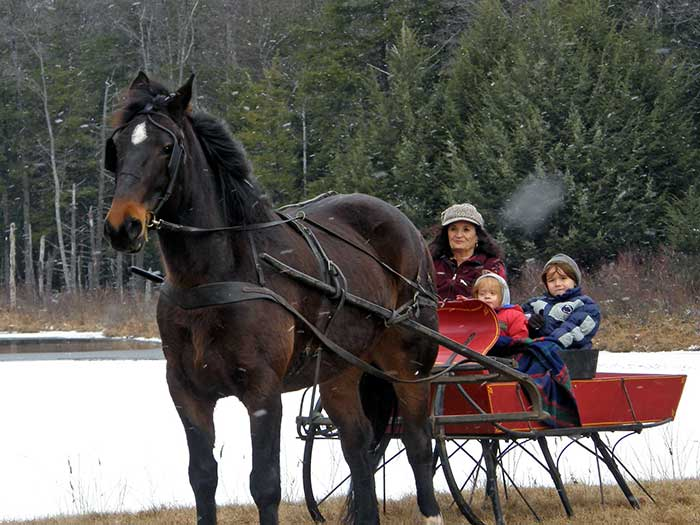 horse pulling sleigh with driver and small children