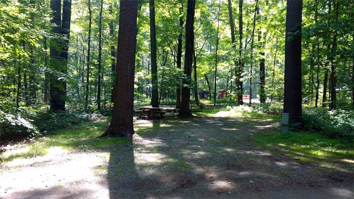 dingmans-campground-sites-in-the-woods