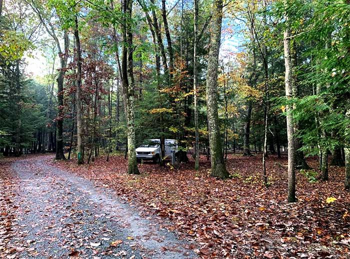 dingmans-campground-van-in-the-woods