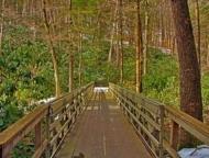 the trail boardwalk