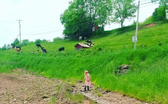 fertile-valley-farm-honesdale-pasture-760