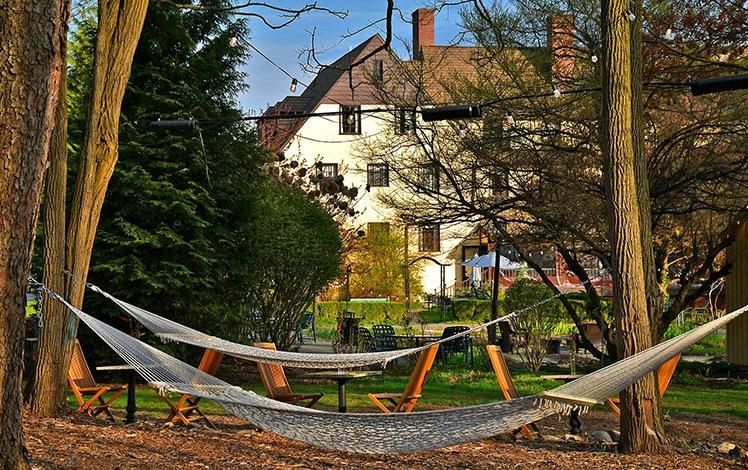 hammocks in grants' woods trees