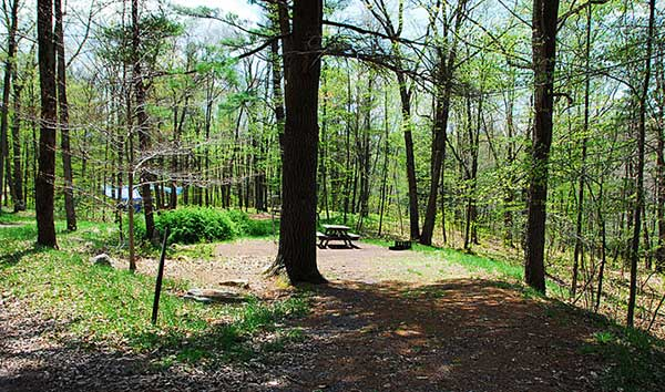 hickory-run-state-park-campground-wooded-tent-site