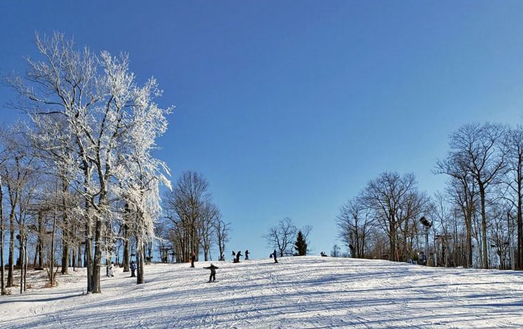 jack-frost-ski-area-looking-up-slope