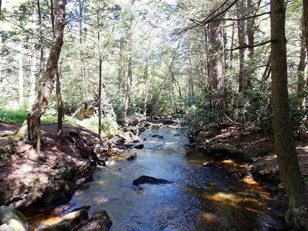jim-thorpe-camping-resort-mauch-chunk-creek-bridge