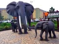 kalahari-water-park-resort-elephants-out-front