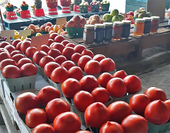 kenrro-farm-market-tomatoes