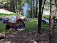 ledgedale-recreation-area-tent-site-with-stream