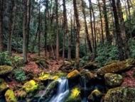 lehigh-gorge-region-waterfall-and-stream