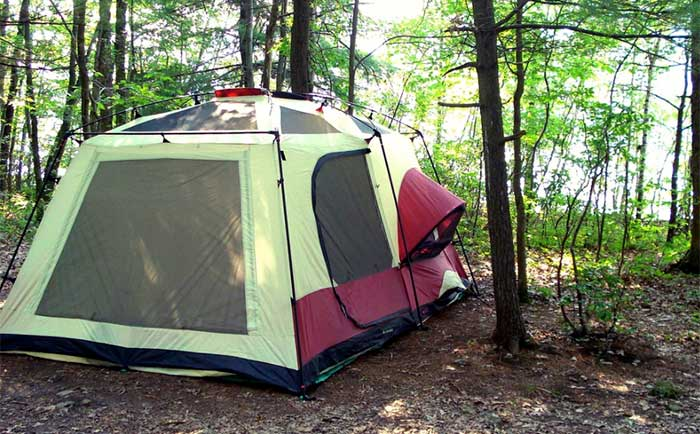 tent site in the woods
