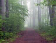 mcdade-recreational-trail-gravel