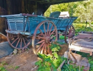 millbrook-village-antique-horse-drawn-cart-blue paint