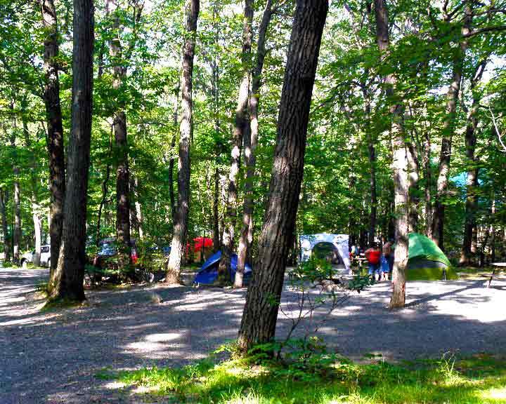 mount-pocono-campground-group-of-tent-sites