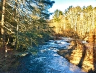 pasold farm nature preserve brodhead creek in october sunlight