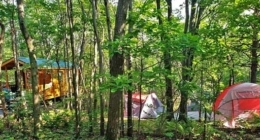 peaceful-woodlands-family-campground