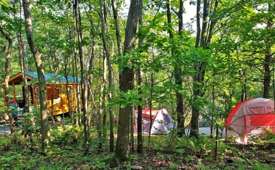 peaceful-woodlands-family-campground-cabins-and-tents
