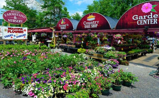 pocono-farmstand-nursery building and parking lot full of flowering plants