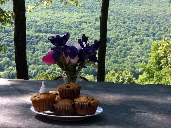 santosha-on-the-ridge-B&B-muffins-on-the-deck-overlooking-the-trees