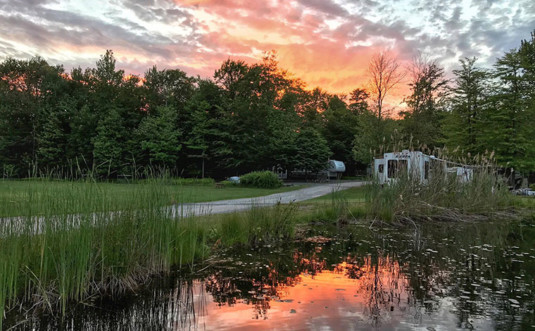 secluded-acres-campground-marsh-and-reeds