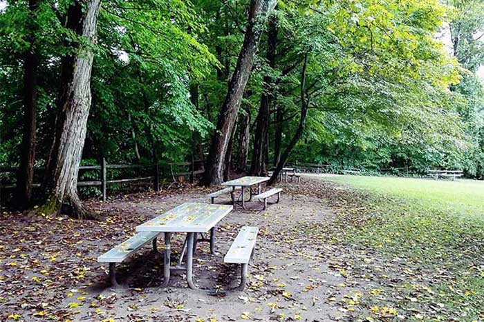 smithfield-beach-picnic-tables-in-the-trees