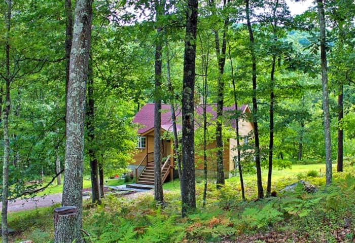 luxury cabin in the woods