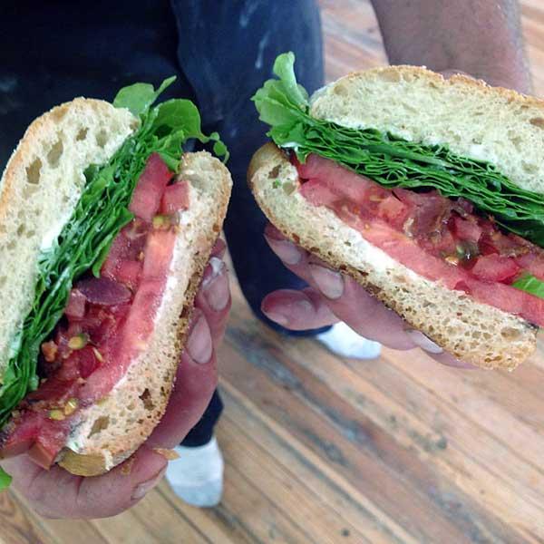 wayne-county-farmers-market-blt-sandwich