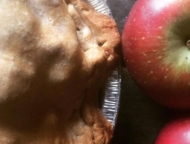 windy-brow-farms-apples-and-apple-pie